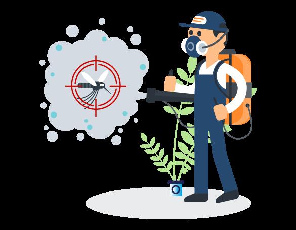 Professional Pest Control Buderim